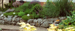 GaLaBau und Grünanlagenpflege