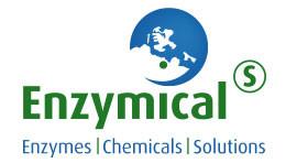 Bild zu Enzymicals AG in Greifswald