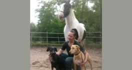 Hund und Pferd - Verhaltenstherapie und Training Ludwigshafen am Rhein
