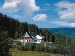 Das Wald-Hotel mitten im Grünen. Ruhig gelegen!