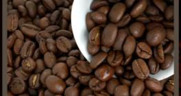 Michael Becker Kaffeemaschinenreparaturen Mainz am Rhein