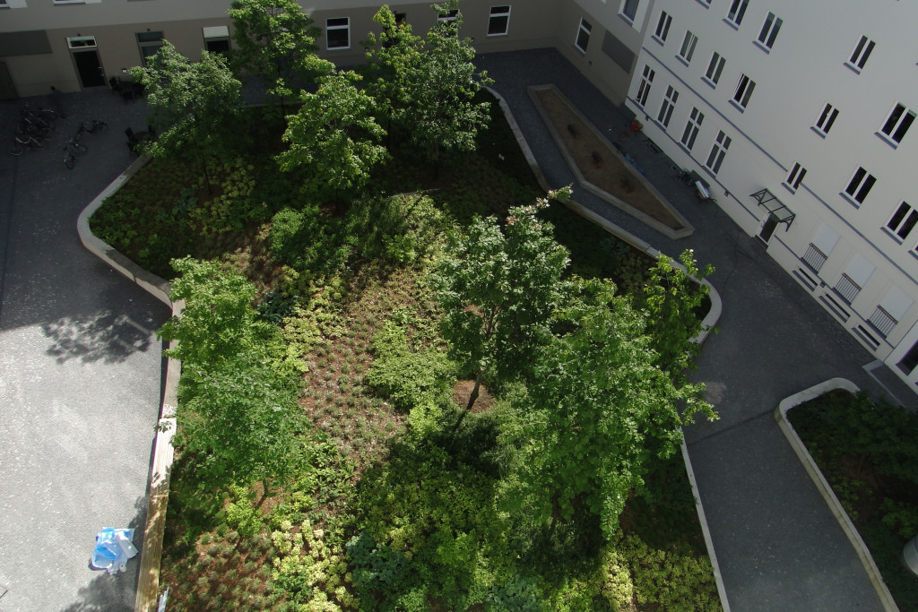 garten landschaftsbau zossen sven rattarius in zossen branchenbuch deutschland. Black Bedroom Furniture Sets. Home Design Ideas