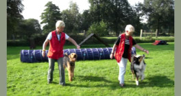 Hundeschule Axstedt - Trainingszentrum für Hund & Halter in Niedersachsen Inh. Marianne Brand Axstedt