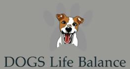 DOGS Life Balance Neubiberg