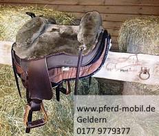 Pferd mobil Geldern