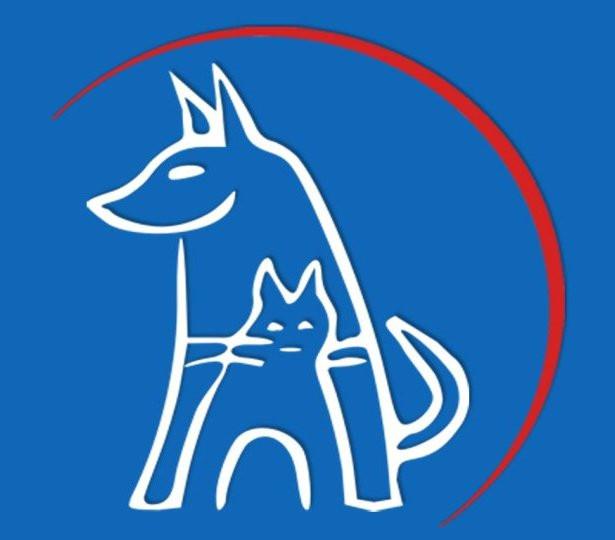 Bild zu Tierarztpraxis Bogenhausen Isabelle Heiss in München