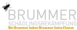 Bild zu Kurt Brummer Schädlingsbekämpfung in Karlsfeld