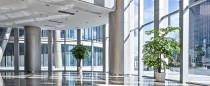 BRAVO Gebäudereinigung GmbH & Co. KG