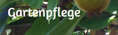 Bild zu Forst und Grundstückspflege Weißinger.UG (haftungsbeschränkt) in Altenriet