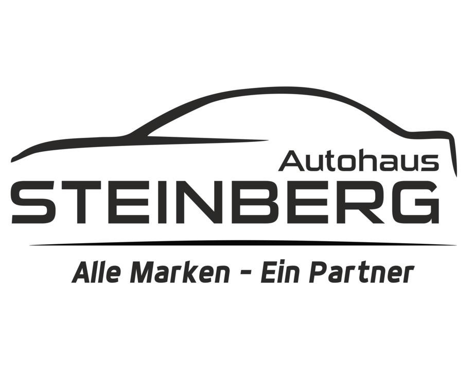 Bild zu Autohaus Steinberg in Oerlinghausen