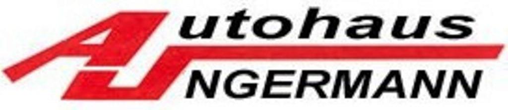 Logo von Autohaus Ungermann Inh. René Ungermann