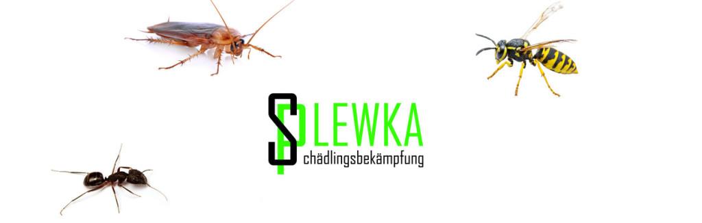 Bild zu Plewka Schädlingsbekämpfung in Mönchengladbach