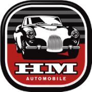 Bild zu Menikheim Automobile GmbH in Hoisdorf