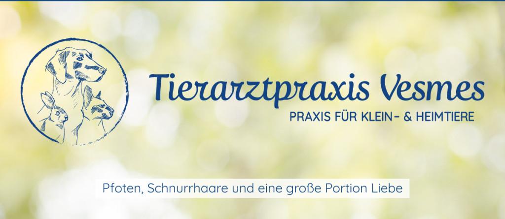 Bild zu Tierarztpraxis Joel Vesmes in Berlin
