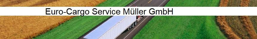 Bild zu Euro-Cargo Service Müller GmbH in Limeshain