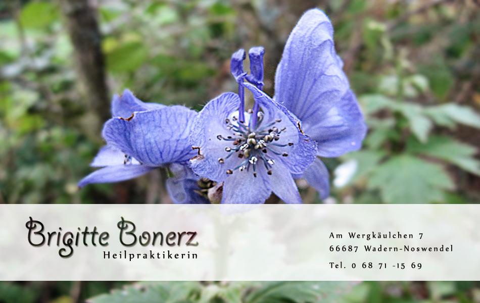 Bild zu Brigitte Bonerz Naturheilpraxis in Wadern