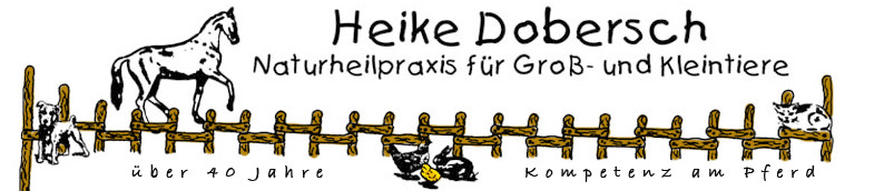 Bild zu Tierheilpraxis Heike Dobersch in Nümbrecht