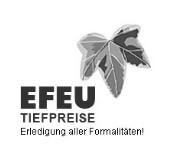 Bild zu EFEU GmbH in Essen