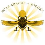 Bild zu Scarabaeus Escort High Class Agentur Frankfurt am Main in Frankfurt am Main
