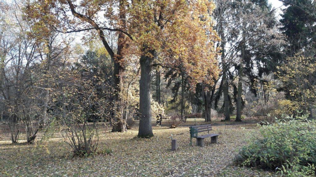 Bild zu Andreas Landschaftsbau - alle Arbeiten im und um den Garten in Nierstein