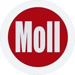 Bild zu Autohaus Moll Gmbh & Co. KG in Königswinter