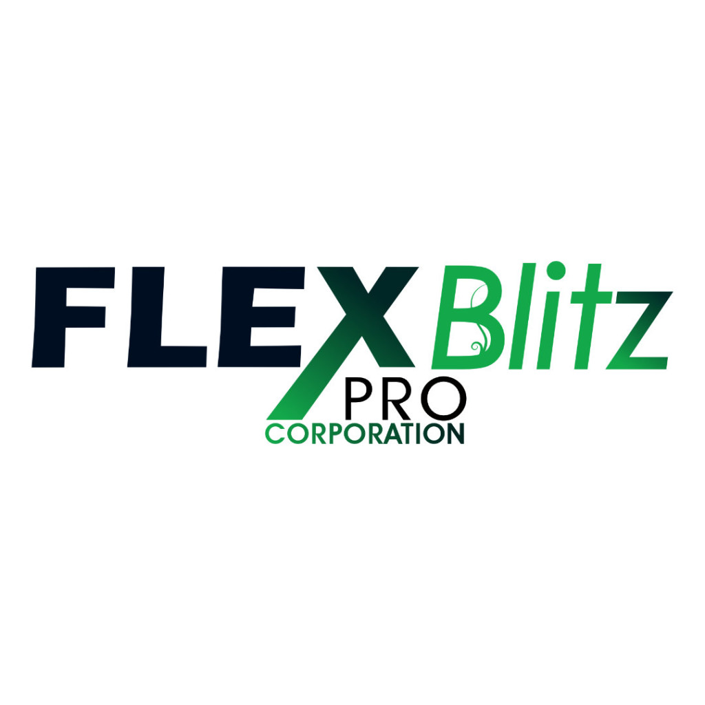 Bild zu FLEXBlitzPro Corporation in Wuppertal