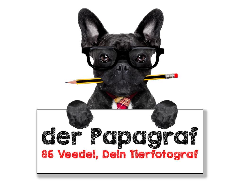 Bild zu der Papagraf in Köln