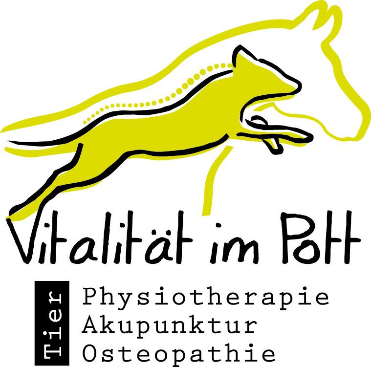 Bild zu Vitalität im Pott in Gelsenkirchen