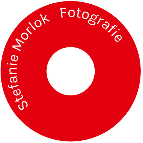 Bild zu Stefanie Morlok Fotografie in Birkenfeld in Württemberg