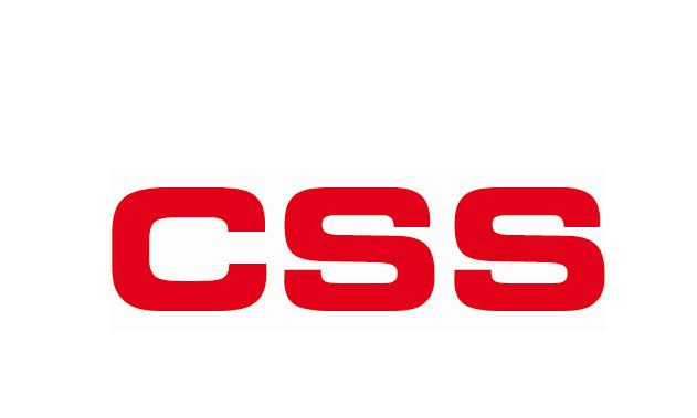 Bild zu CSS-Computer Software Schulung GmbH in Altlußheim