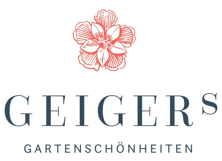 Bild zu Geigers GmbH Gartengestaltung & Pflanzenwelt in Rottenburg am Neckar