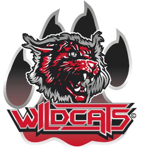 Bild zu Wildcats Cheerleader Leverkusen e.V. in Leverkusen