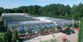 Eingebettet in die ländliche Idylle der Gemeinden Siek und Hoisdorf im Kreis Stormarn, und dennoch über die A1 gut zu erreichen, lockt die Landgärtnerei Beier alle Pflanzenfreunde mit einem unvergleichlichen Angebot.