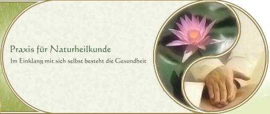 Bild zu Alexander Brandt Heilpraktiker in Recklinghausen