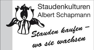 Firmenlogo: Albert Schapmann Staudenkulturen Inh. Karl - Heinz  Schapmann