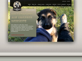 Hundepension vom Steinburgerhof Wendisch Evern
