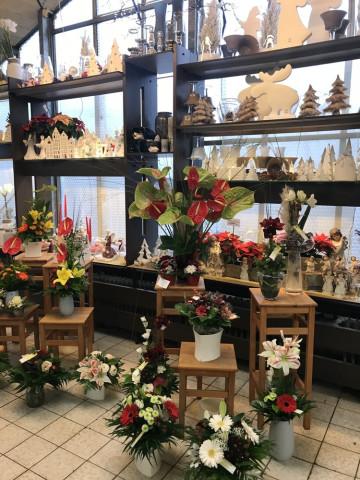 ▷ Blumen- und Gartencenter Wolf Floristik ✅ | Tel. (089) 31160... ☎ -