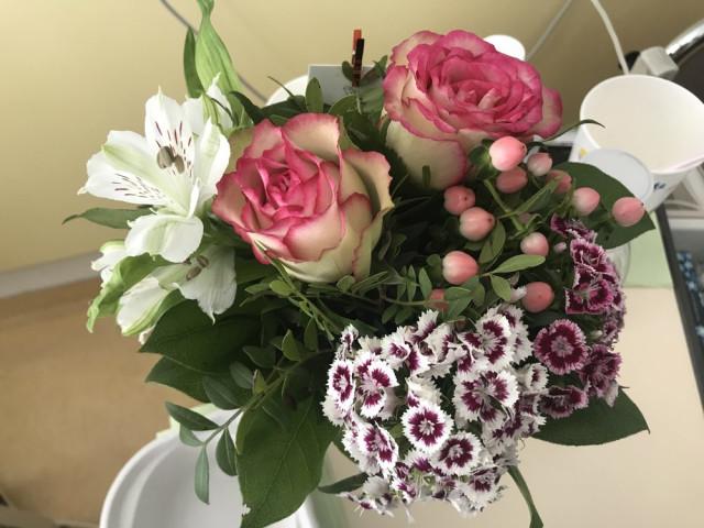 ▷ Blumen- und Gartencenter Wolf Floristik | Tel. (089) 31160... ☎