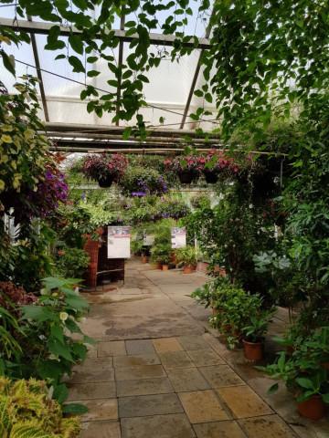 Botanischer Garten Der Universität Potsdam Tel 0331 977