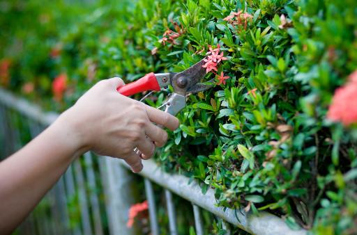 Garten Und Landschaftsbau Aridi Tel 0201 75821