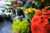 Blumenstäuße