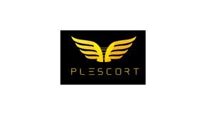 Plescort Frankfurt