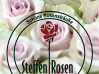Steffen - Rosen Gartenbaubetrieb Bielefeld